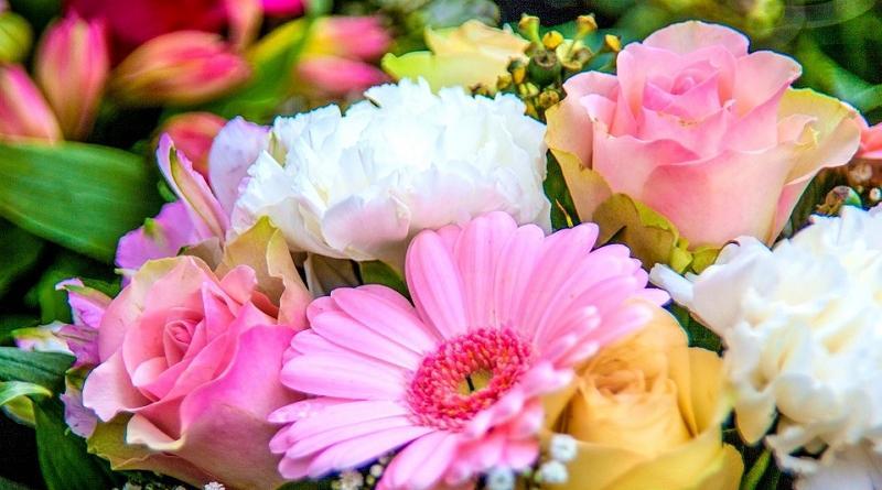 Květiny různé