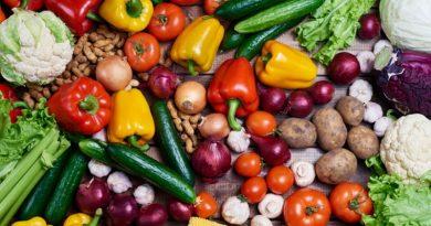Zápisník farmáře 8 – Ovocný sad