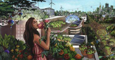 Copiosis – cesta ke zdrojové ekonomice: přechodná fáze