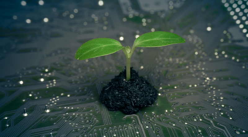 Klíček rostoucí na elektronické desce