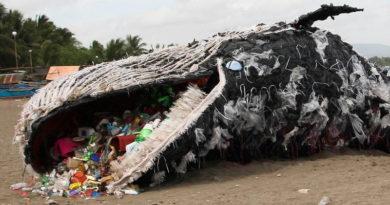 Doba plastová: Otevřený dopis restaurační síti UGO (revidováno 30.07.2018)